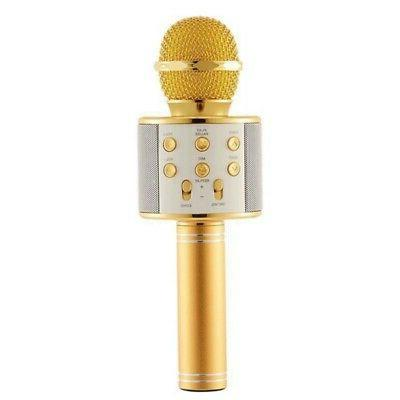 Portable Wireless Bluetooth MIC Microphone Player